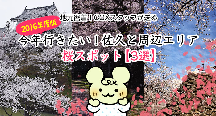 地元密着!COXスタッフが送る今年行きたい!佐久周辺の桜スポット【3選】