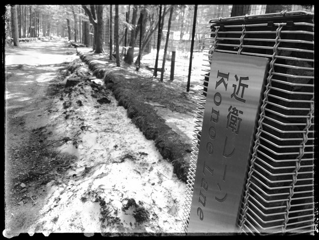 【近衛レーン】